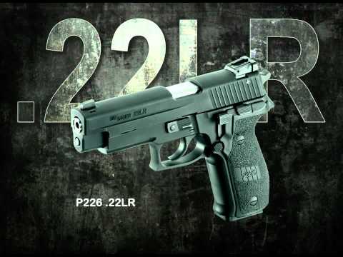 2011 Sig Pistols