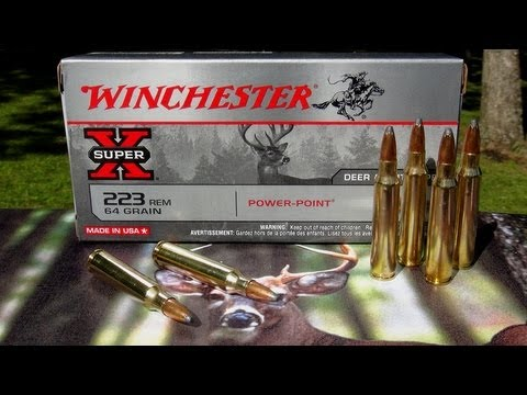 Ammo Review - 223 Winchester 64 gr Power-Point