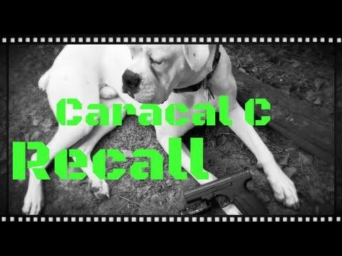 Caracal C Recall