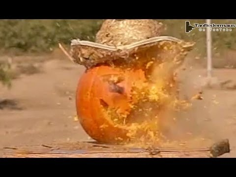 Military Grade 00 Buckshot vs Pumpkin