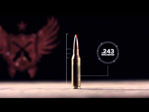 Silencerco New Products Teaser