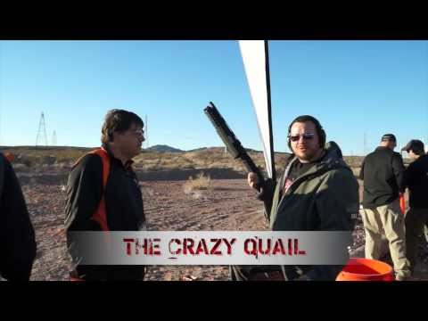 Crazy Quail Live Bird Shooting Simulator