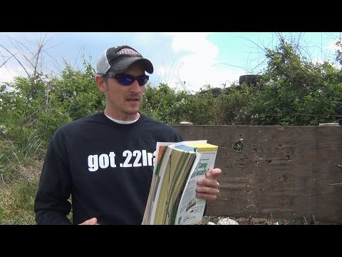 .22LR vs Phone Book
