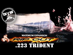 223 RIP OUT Trident Ammo Test