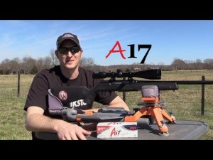 Savage A17 Rifle