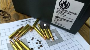 AngelFire Remanufactured Ammo Review